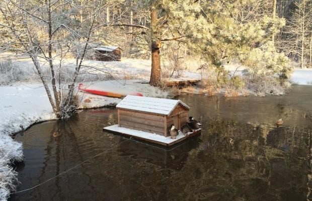 Pond in Orange County NC