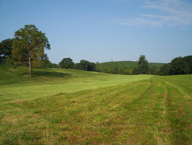 NC Rural Living