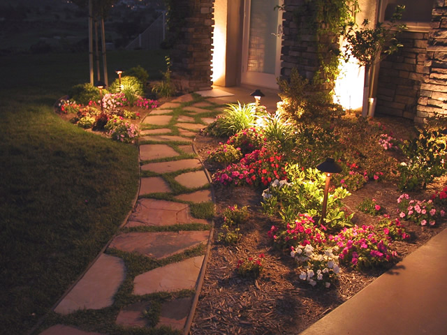 Friendly Landscape Lighting for Wildlife
